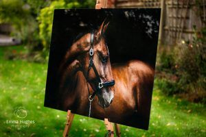 Acrylic gallery