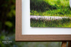 detail of a fine art float frame