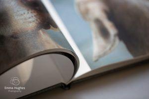open spread of fine art book